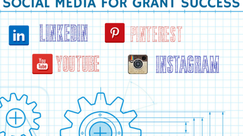 Lions, Tigers, and Bears…I mean LinkedIn, YouTube, and Pinterest
