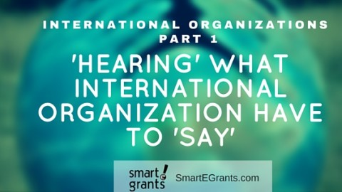 Working with International Organizations Part 1