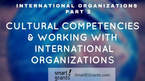 Part 2: Working with International Organizations: Cultural Competencies