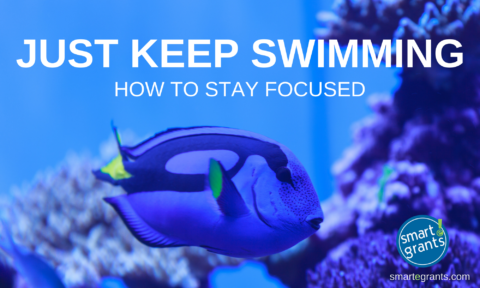 Just Keep Swimming: How I Stay Focused