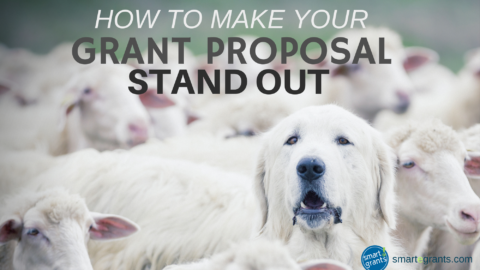 How to Make Your Grant Requests Stand Out from the Crowd